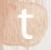 _0004s_0003_twitter