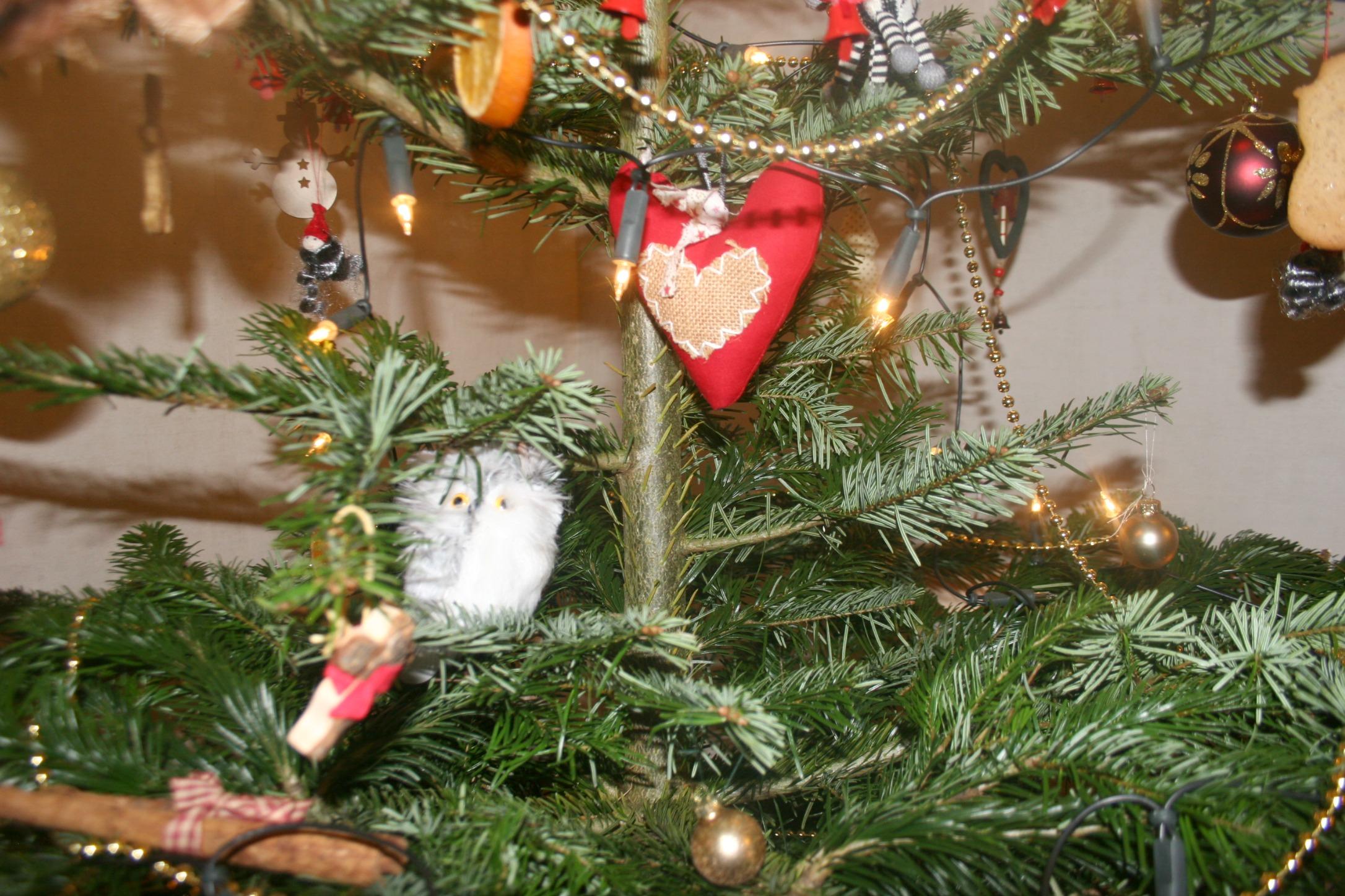 Owl On Christmas Tree