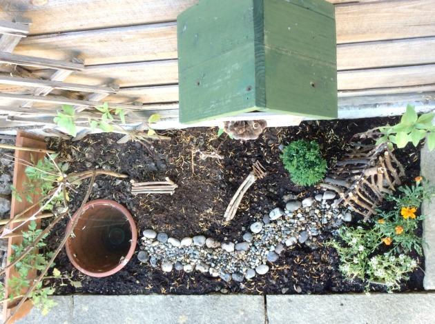 mini garden for a child